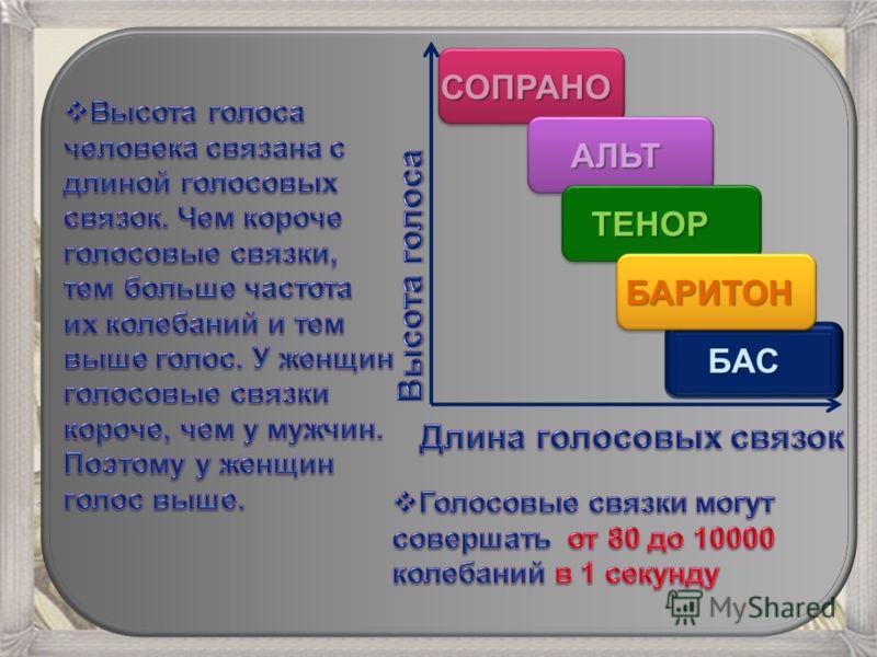 СОПРАНО АЛЬТ ТЕНОР БАРИТОН БАС