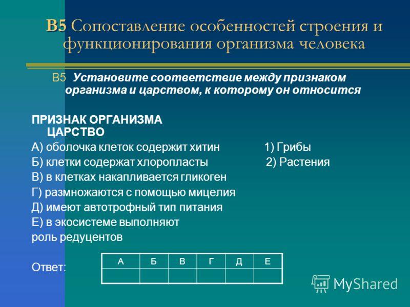 В5 Сопоставление особенностей строения и функционирования организма человека АБВГДЕ В5 Установите соответствие между признаком организма и царством, к которому он относится ПРИЗНАК ОРГАНИЗМА ЦАРСТВО A) оболочка клеток содержит хитин 1) Грибы Б) клетк