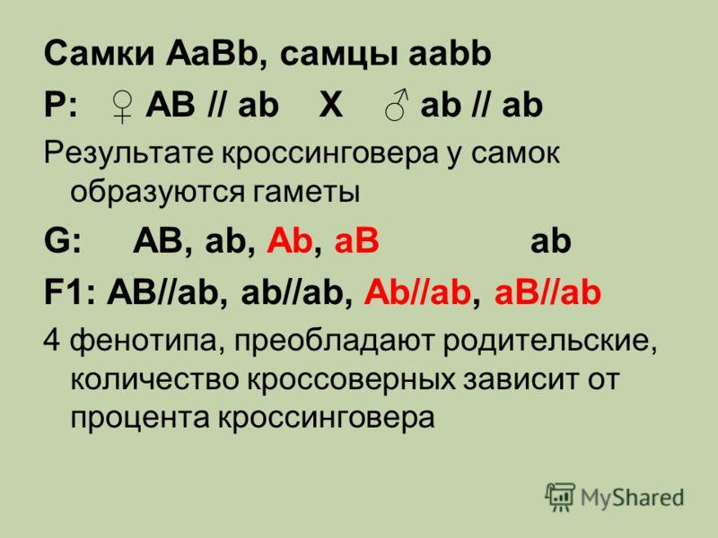 Самки AaBb, самцы aabb Р: AB // ab Х ab // ab Результате кроссинговера у самок образуются гаметы G: AB, ab, Ab, aB ab F1: AB//ab, ab//ab, Ab//ab, aB//ab 4 фенотипа, преобладают родительские, количество кроссоверных зависит от процента кроссинговера