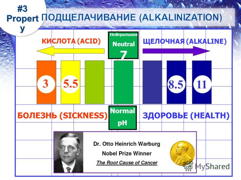 ЩЕЛОЧНАЯ (ALKALINE) КИСЛОТА (ACID) Нейтральная Neutral 7 БОЛЕЗНЬ (SICKNESS)ЗДОРОВЬЕ (HEALTH) 3 11 8.5 5.5 Normal pH 11 #3 Propert y