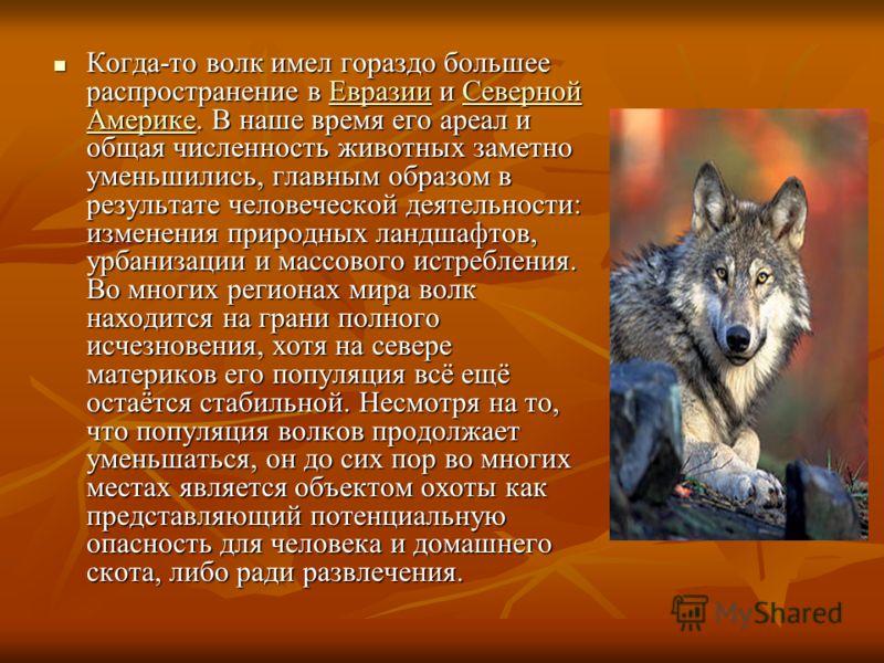 Когда-то волк имел гораздо большее распространение в Евразии и Северной Америке. В наше время его ареал и общая численность животных заметно уменьшились, главным образом в результате человеческой деятельности: изменения природных ландшафтов, урбаниза