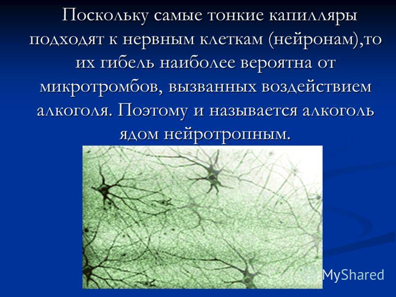 Поскольку самые тонкие капилляры подходят к нервным клеткам (нейронам),то их гибель наиболее вероятна от микротромбов, вызванных воздействием алкоголя. Поэтому и называется алкоголь ядом нейротропным. Поскольку самые тонкие капилляры подходят к нервн