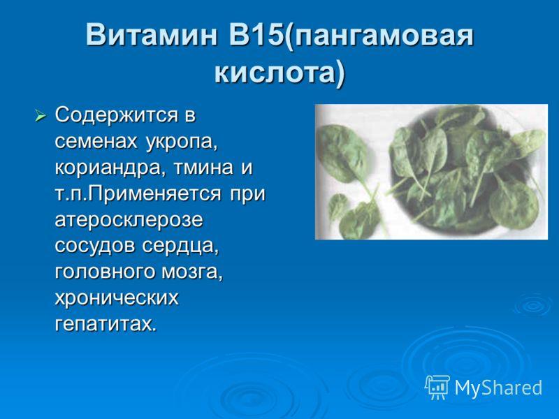 Витамин В15(пангамовая кислота) Содержится в семенах укропа, кориандра, тмина и т.п.Применяется при атеросклерозе сосудов сердца, головного мозга, хронических гепатитах. Содержится в семенах укропа, кориандра, тмина и т.п.Применяется при атеросклероз