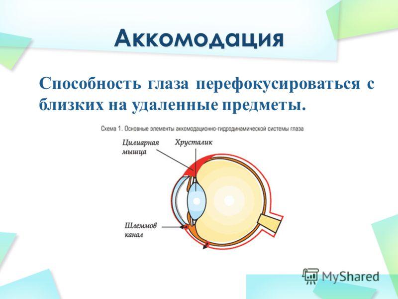 Способность глаза перефокусироваться с близких на удаленные предметы.