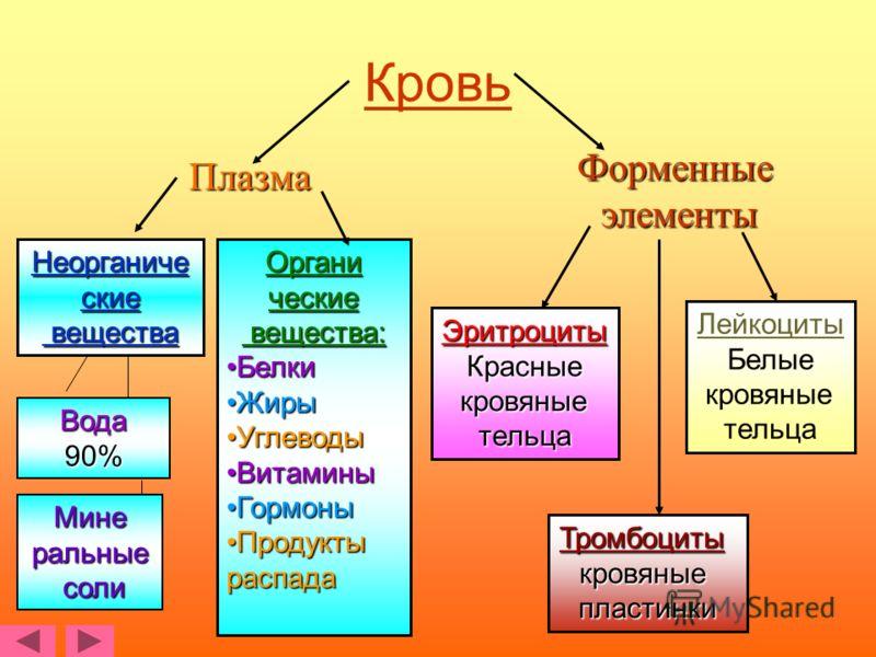 Состав крови крови Плазма 60% Форменные элементы элементы40%