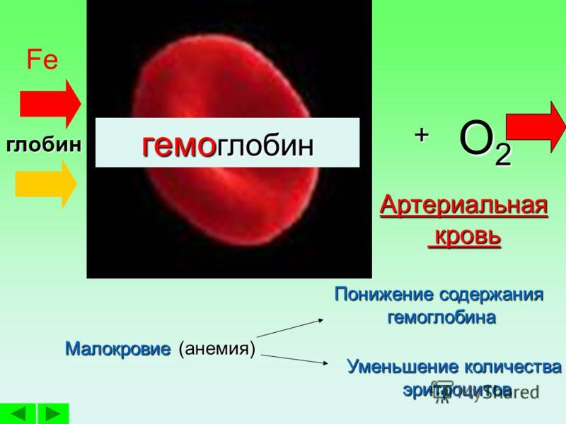 Функция (транспор тная) Перенос О 2, СО 2Строение: очень малые р-ры,очень малые р-ры, не имеют ядра, Вид - двояко- вогнутых дис ков,Вид - двояко- вогнутых дис ков, Содержат белок гемо глобин. Место образова ния Красный костный мозг Место разруше нияП