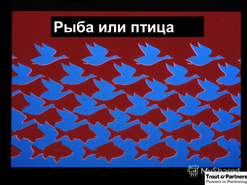 Рыба или птица