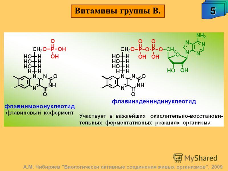 А.М. Чибиряев Биологически активные соединения живых организмов, 2009 5 Витамины группы В.