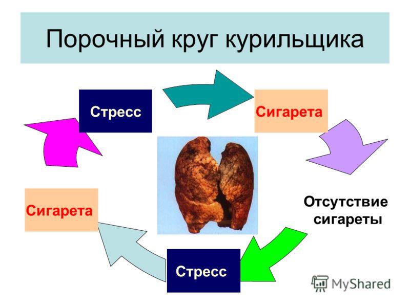 Порочный круг курильщика