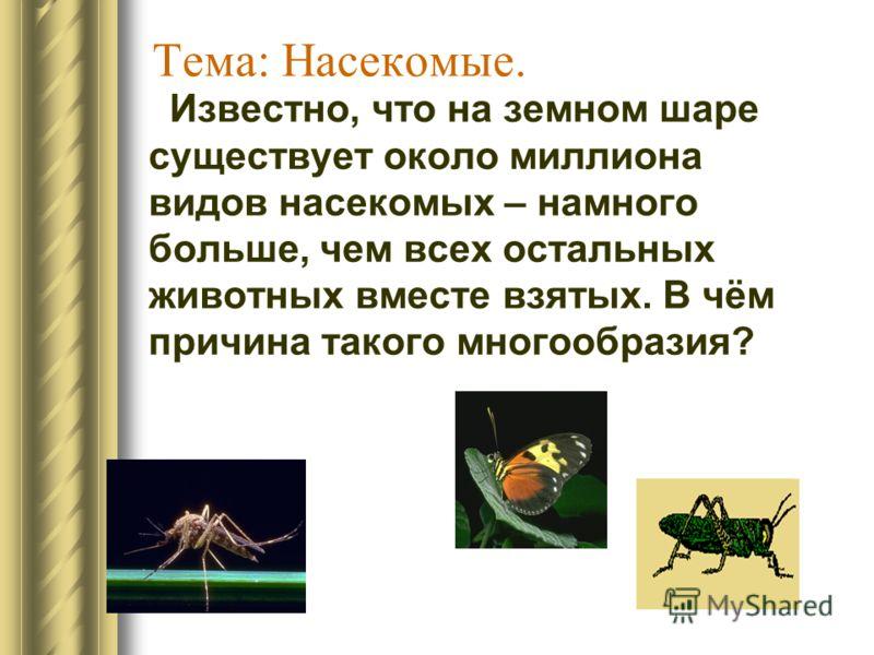 Тема: Насекомые. Известно, что на земном шаре существует около миллиона видов насекомых – намного больше, чем всех остальных животных вместе взятых. В чём причина такого многообразия?