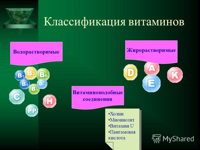 Классификация витаминов Водорастворимые Жирорастворимые Витаминоподобные соединения Холин Миоинозит Витамин U Пангамовая кислота Холин Миоинозит Витамин U Пангамовая кислота