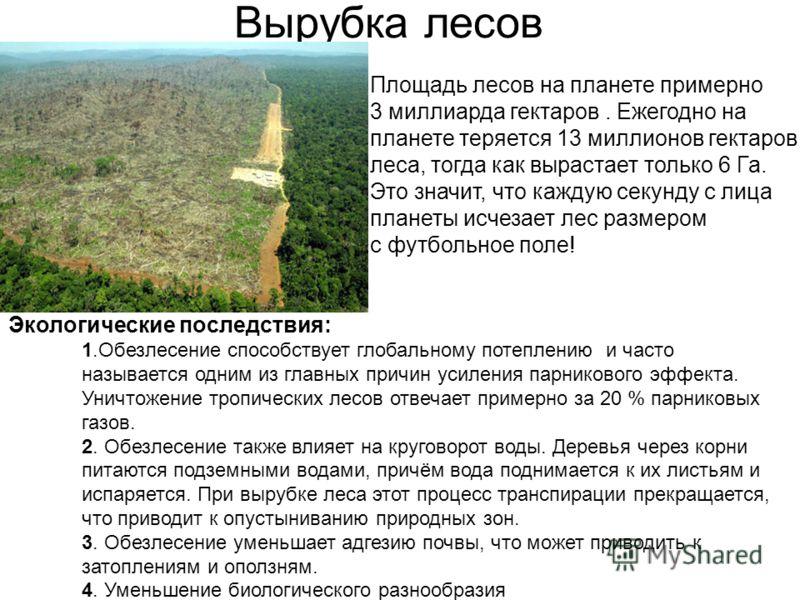 Вырубка лесов Площадь лесов на планете примерно 3 миллиарда гектаров. Ежегодно на планете теряется 13 миллионов гектаров леса, тогда как вырастает только 6 Га. Это значит, что каждую секунду с лица планеты исчезает лес размером с футбольное поле! Эко
