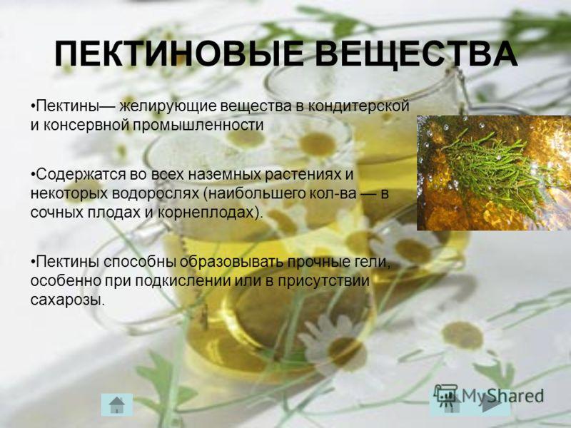 ПЕКТИНОВЫЕ ВЕЩЕСТВА Пектины желирующие вещества в кондитерской и консервной промышленности Содержатся во всех наземных растениях и некоторых водорослях (наибольшего кол-ва в сочных плодах и корнеплодах). Пектины способны образовывать прочные гели, ос