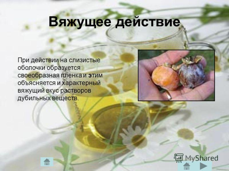 Вяжущее действие При действии на слизистые оболочки образуется своеобразная пленка и этим объясняется и характерный вяжущий вкус растворов дубильных веществ.