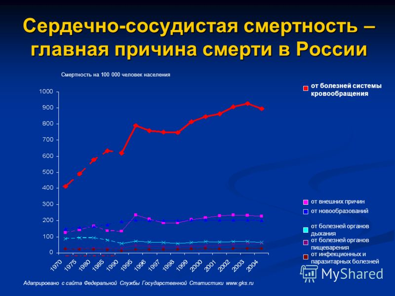 Сердечно-сосудистая смертность – главная причина смерти в России от болезней системы кровообращения от новообразований от внешних причин от болезней органов дыхания от болезней органов пищеварения от инфекционных и паразитарных болезней Адаприровано