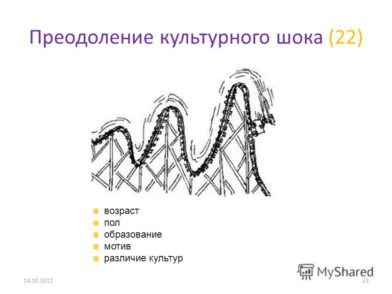 Преодоление культурного шока (22) 14.10.201123 возраст пол образование мотив различие культур