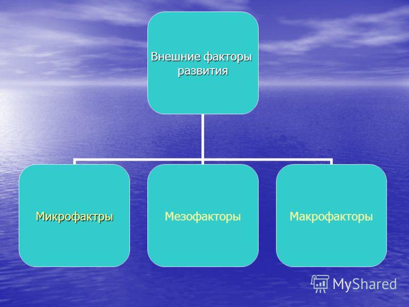 Внешние факторы развития МикрофактрыМезофакторыМакрофакторы