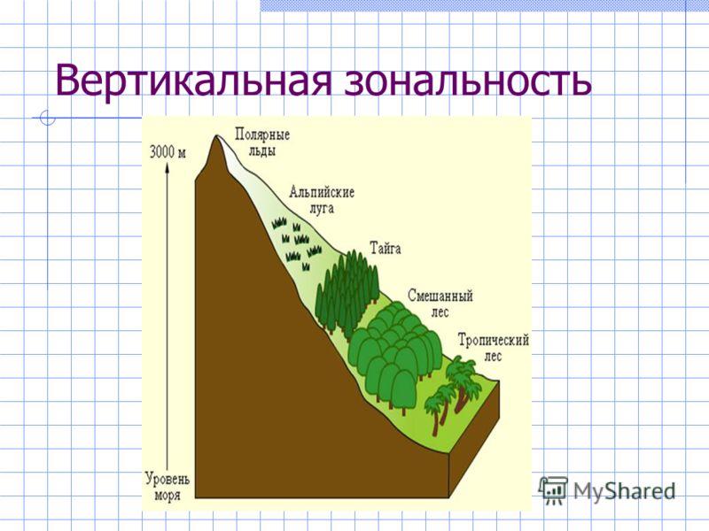 Вертикальная зональность
