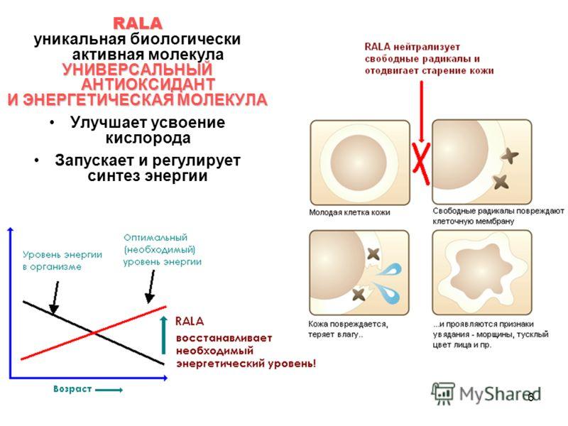 6 RALA уникальная биологически активная молекула УНИВЕРСАЛЬНЫЙ АНТИОКСИДАНТ И ЭНЕРГЕТИЧЕСКАЯ МОЛЕКУЛА Улучшает усвоение кислорода Запускает и регулирует синтез энергии