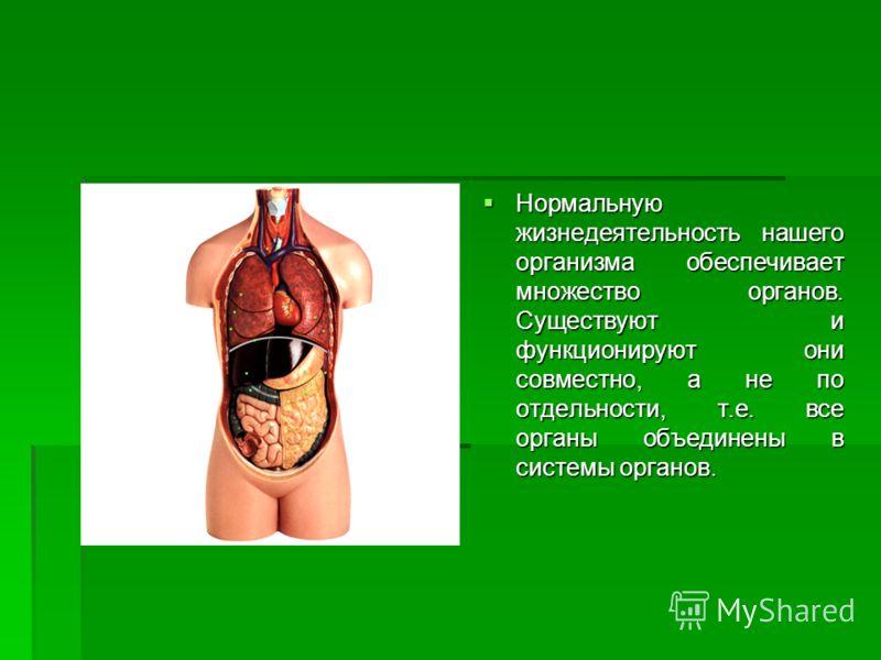 Нормальную жизнедеятельность нашего организма обеспечивает множество органов. Существуют и функционируют они совместно, а не по отдельности, т.е. все органы объединены в системы органов. Нормальную жизнедеятельность нашего организма обеспечивает множ