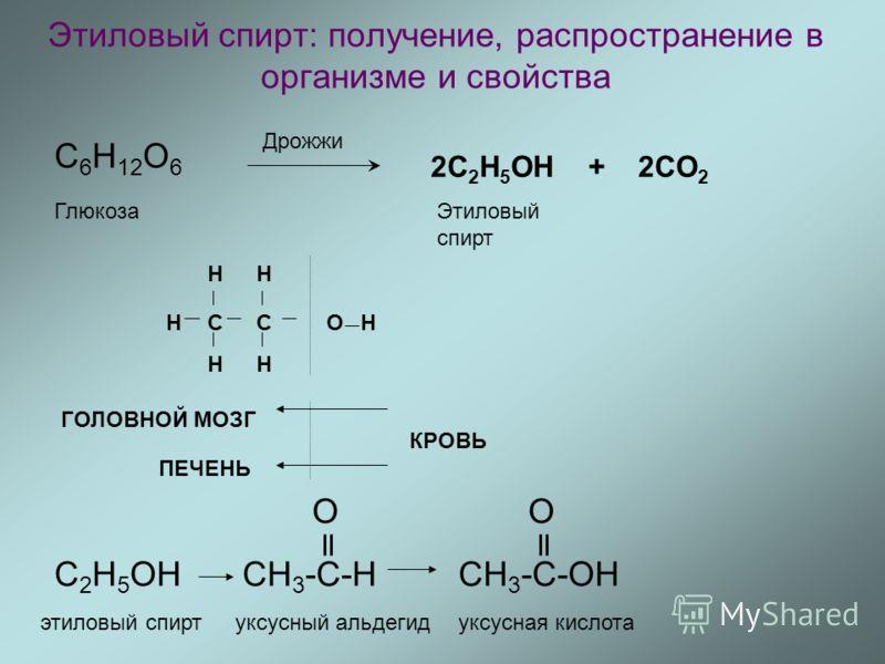 Этиловый спирт: получение, распространение в организме и свойства C 6 H 12 O 6 Дрожжи 2С 2 H 5 OH + 2CO 2 Этиловый спирт Глюкоза CC H H H H H OH ГОЛОВНОЙ МОЗГ ПЕЧЕНЬ КРОВЬ С 2 H 5 OHCH 3 -C-H O CH 3 -C-OH O этиловый спиртуксусный альдегидуксусная кис