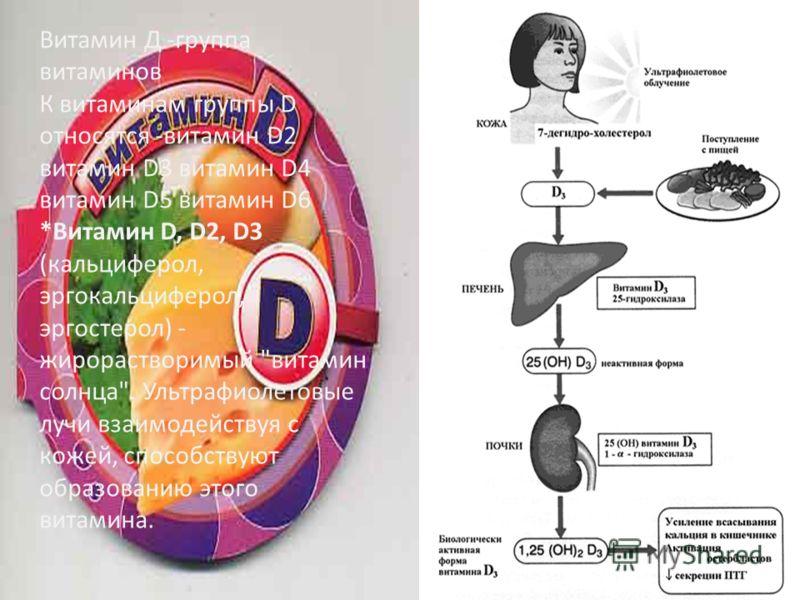 Витамин Д -группа витаминов К витаминам группы D относятся -витамин D2 витамин D3 витамин D4 витамин D5 витамин D6 *Витамин D, D2, D3 (кальциферол, эргокальциферол, эргостерол) - жирорастворимый
