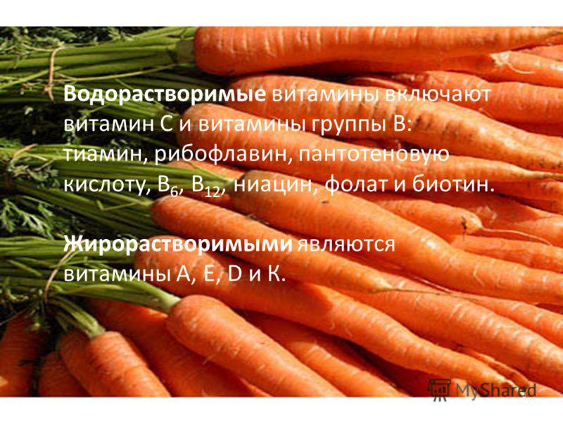 Водорастворимые витамины включают витамин С и витамины группы В: тиамин, рибофлавин, пантотеновую кислоту, В 6, В 12, ниацин, фолат и биотин. Жирорастворимыми являются витамины А, Е, D и К.
