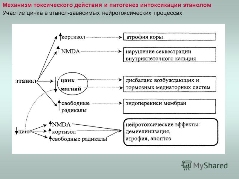 Механизм токсического действия и патогенез интоксикации этанолом Участие цинка в этанол-зависимых нейротоксических процессах