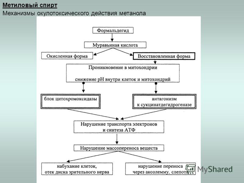 Метиловый спирт Механизмы окулотоксического действия метанола