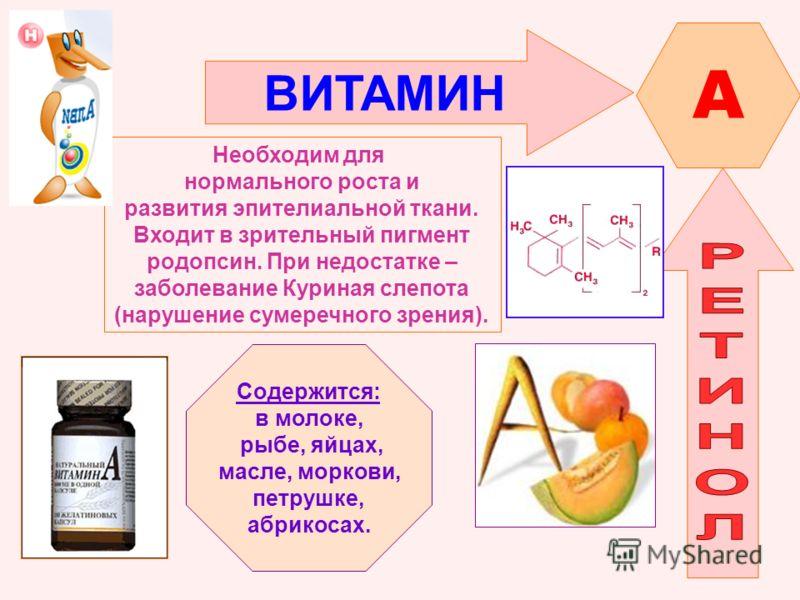 ВИТАМИН A Необходим для нормального роста и развития эпителиальной ткани. Входит в зрительный пигмент родопсин. При недостатке – заболевание Куриная слепота (нарушение сумеречного зрения). Содержится: в молоке, рыбе, яйцах, масле, моркови, петрушке,