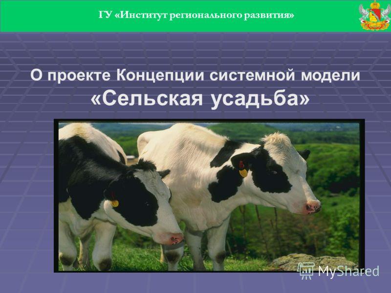 30 О проекте Концепции системной модели «Сельская усадьба» ГУ «Институт регионального развития»