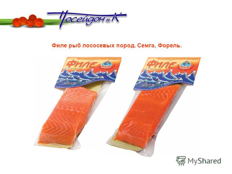 Филе рыб лососевых пород. Семга, Форель.