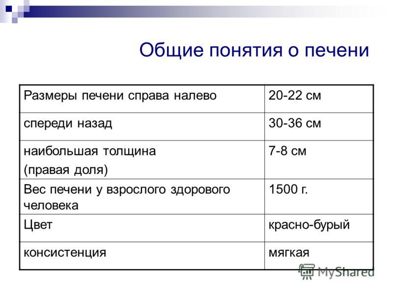 Общие понятия о печени Размеры печени справа налево20-22 см спереди назад30-36 см наибольшая толщина (правая доля) 7-8 см Вес печени у взрослого здорового человека 1500 г. Цветкрасно-бурый консистенциямягкая