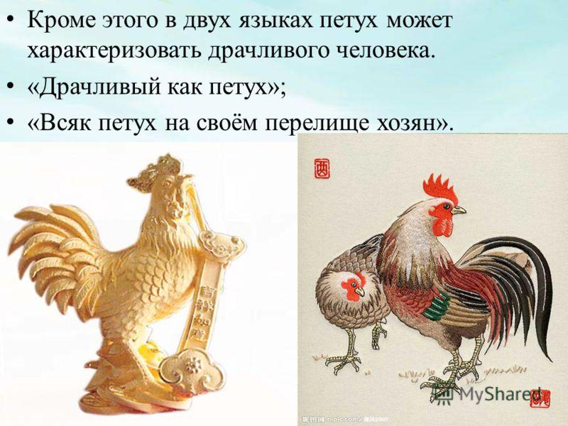 Кроме этого в двух языках петух может характеризовать драчливого человека. «Драчливый как петух»; «Всяк петух на своём перелище хозян».