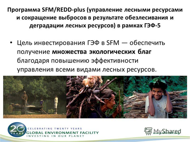 Программа SFM/REDD-plus (управление лесными ресурсами и сокращение выбросов в результате обезлесивания и деградации лесных ресурсов) в рамках ГЭФ-5 Цель инвестирования ГЭФ в SFM обеспечить получение множества экологических благ благодаря повышению эф