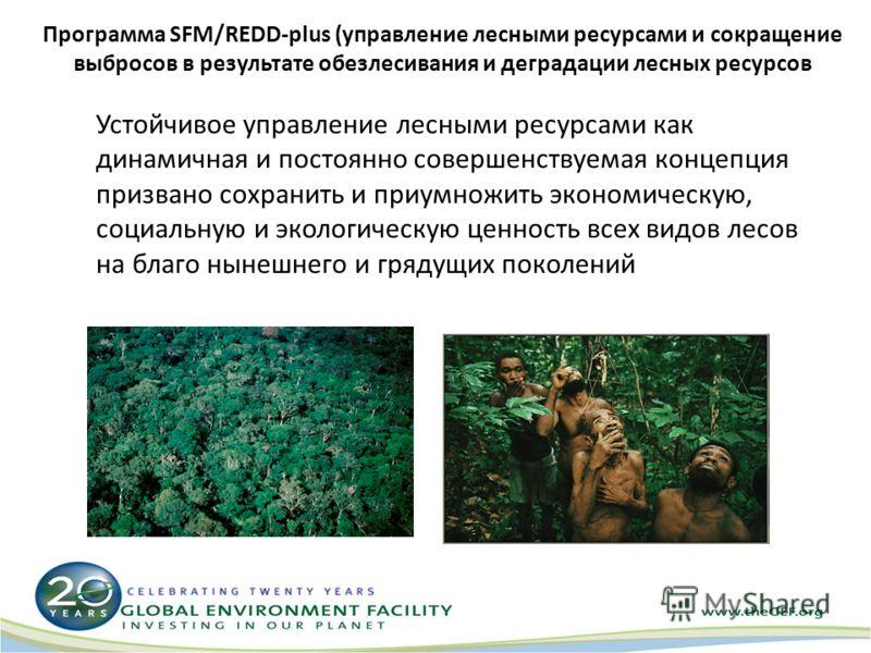 Программа SFM/REDD-plus (управление лесными ресурсами и сокращение выбросов в результате обезлесивания и деградации лесных ресурсов Устойчивое управление лесными ресурсами как динамичная и постоянно совершенствуемая концепция призвано сохранить и при