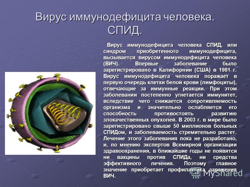 Вирус иммунодефицита человека. СПИД. Вирус иммунодефицита человека СПИД, или синдром приобретенного иммунодефицита, вызывается вирусом иммунодефицита человека (ВИЧ). Впервые заболевание было зарегистрировано в Калифорнии (США) в 1981 г. Вирус иммунод