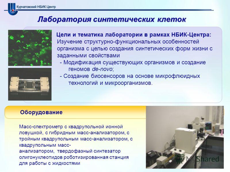 Лаборатория синтетических клеток Цели и тематика лаборатории в рамках НБИК-Центра: Изучение структурно-функциональных особенностей организма с целью создания синтетических форм жизни с заданными свойствами - Модификация существующих организмов и созд