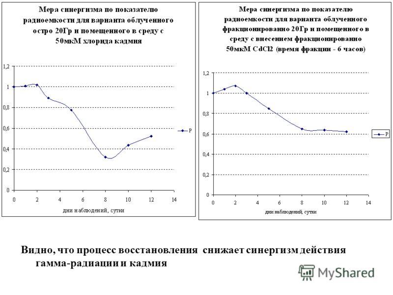 Видно, что процесс восстановления снижает синергизм действия гамма-радиации и кадмия