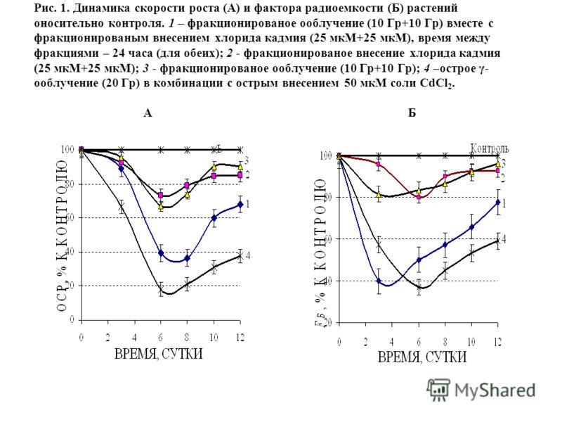 Рис. 1. Динамика скорости роста (А) и фактора радиоемкости (Б) растений оносительно контроля. 1 – фракционированое ооблучение (10 Гр+10 Гр) вместе с фракционированым внесением хлорида кадмия (25 мкМ+25 мкМ), время между фракциями – 24 часа (для обеих