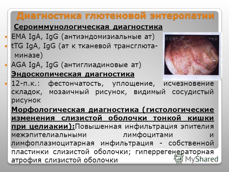 Диагностика глютеновой энтеропатии Сероиммунологическая диагностика EMA IgA, IgG (антиэндомизиальные ат) tTG IgA, IgG (ат к тканевой трансглюта- миназе) AGA IgA, IgG (антиглиадиновые ат) Эндоскопическая диагностика 12-п.к.: фестончатость, уплощение,
