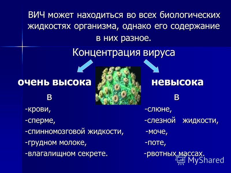 ВИЧ может находиться во всех биологических жидкостях организма, однако его содержание в них разное. ВИЧ может находиться во всех биологических жидкостях организма, однако его содержание в них разное. Концентрация вируса Концентрация вируса очень высо