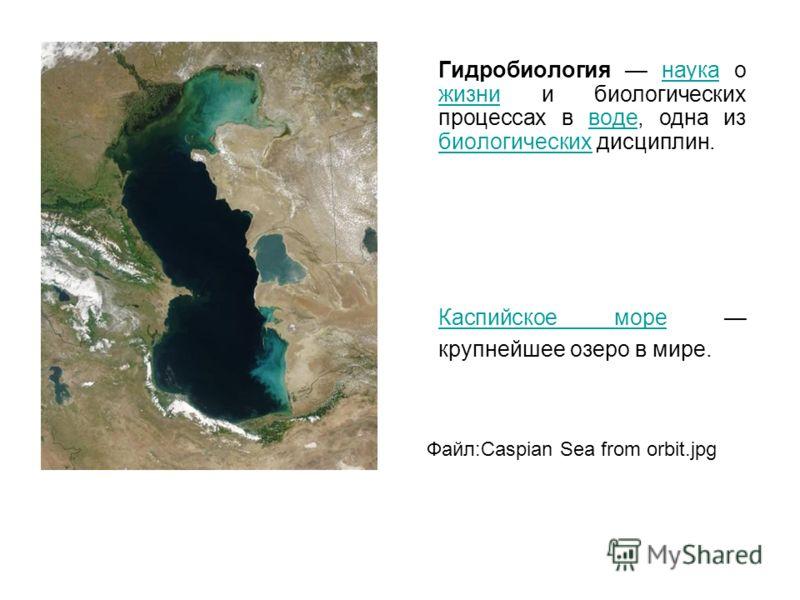 Гидробиология наука о жизни и биологических процессах в воде, одна из биологических дисциплин.наука жизниводе биологических Каспийское мореКаспийское море крупнейшее озеро в мире. Файл:Caspian Sea from orbit.jpg