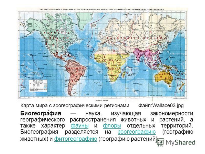 Биогеогра́фия наука, изучающая закономерности географического распространения животных и растений, а также характер фауны и флоры отдельных территорий. Биогеография разделяется на зоогеографию (географию животных) и фитогеографию (географию растений)
