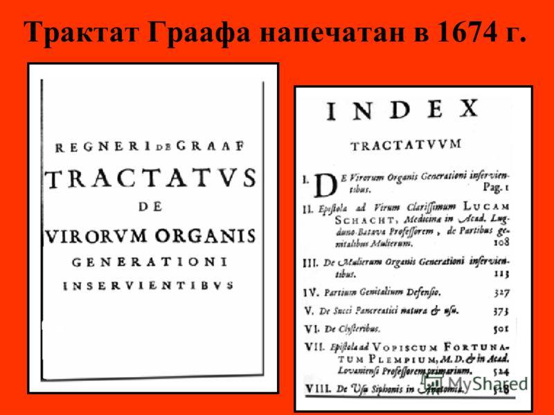 Трактат Граафа напечатан в 1674 г.
