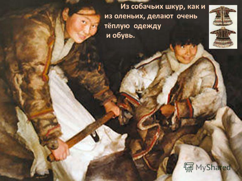 Из собачьих шкур, как и из оленьих, делают очень тёплую одежду и обувь.