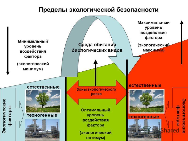 Пределы экологической безопасности Экологические факторы естественные техногенные Минимальный уровень воздействия фактора (экологический минимум) Максимальный уровень воздействия фактора (экологический максимум) Оптимальный уровень воздействия фактор