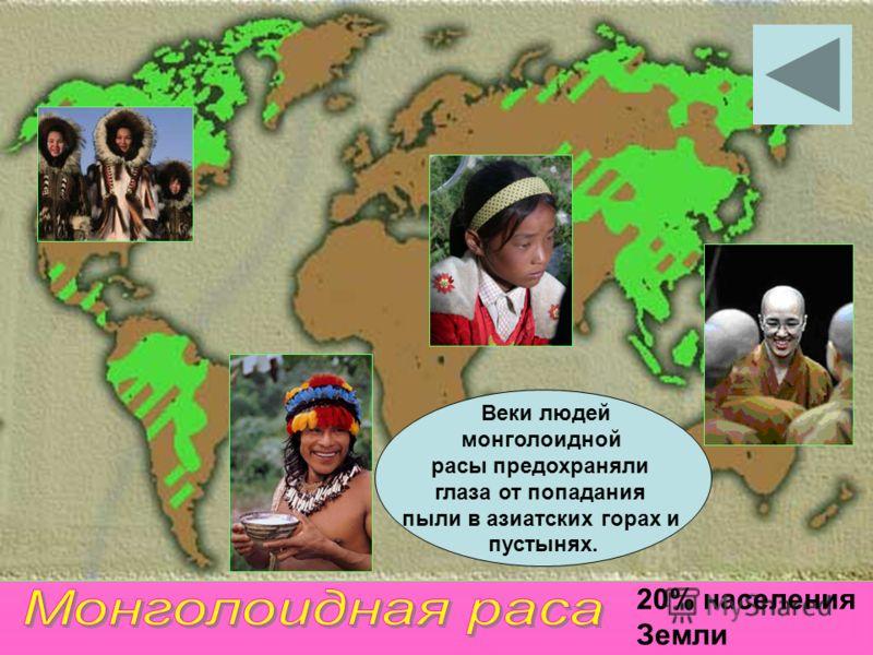 20% населения Земли Веки людей монголоидной расы предохраняли глаза от попадания пыли в азиатских горах и пустынях.