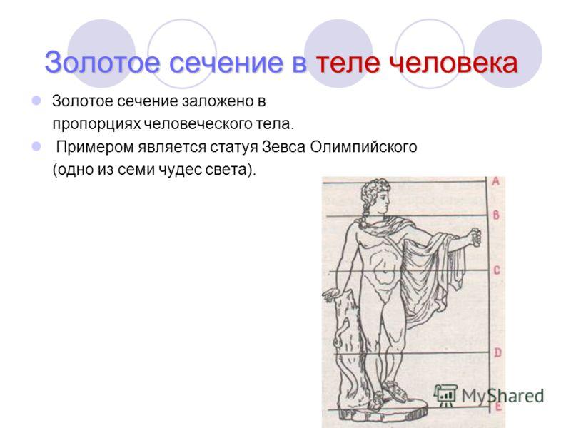 Золотое сечение в теле человека Золотое сечение заложено в пропорциях человеческого тела. Примером является статуя Зевса Олимпийского (одно из семи чудес света).