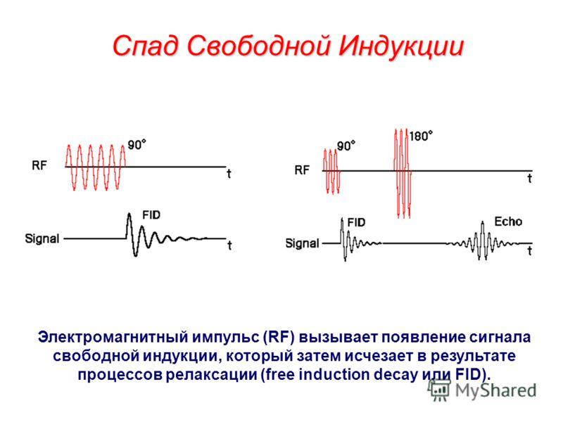 Круговые проекции градиента магнитного поля Круговая проекция магнитного поля дает 2х-мерное изображение изучаемых объектов